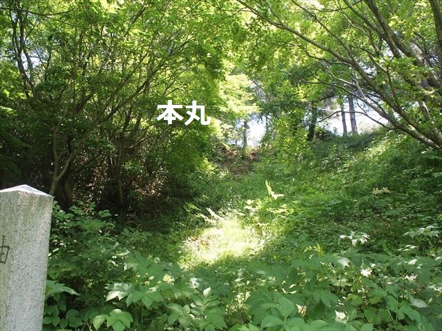 春日山IMG_3584
