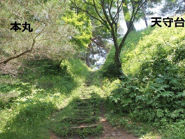 春日山IMG_3580