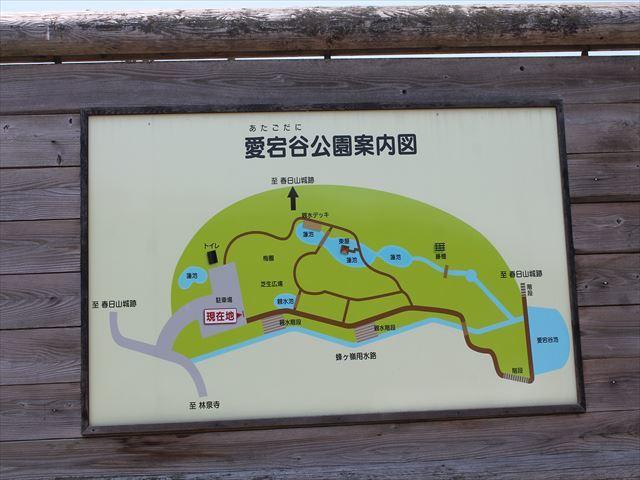 春日山IMG_3676