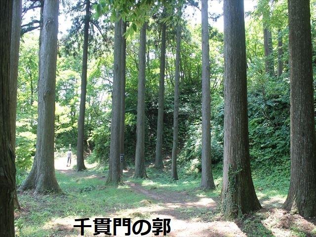 春日山IMG_3643