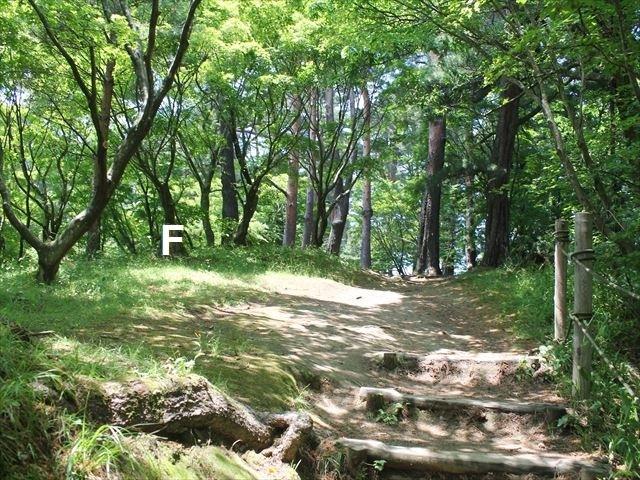 春日山IMG_3631
