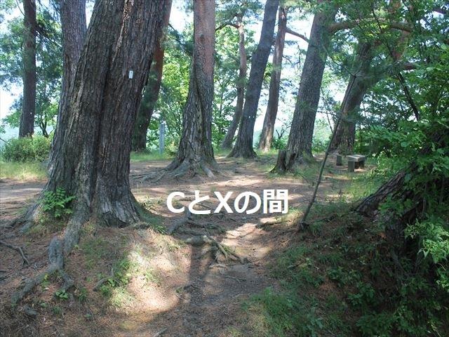 春日山IMG_3621
