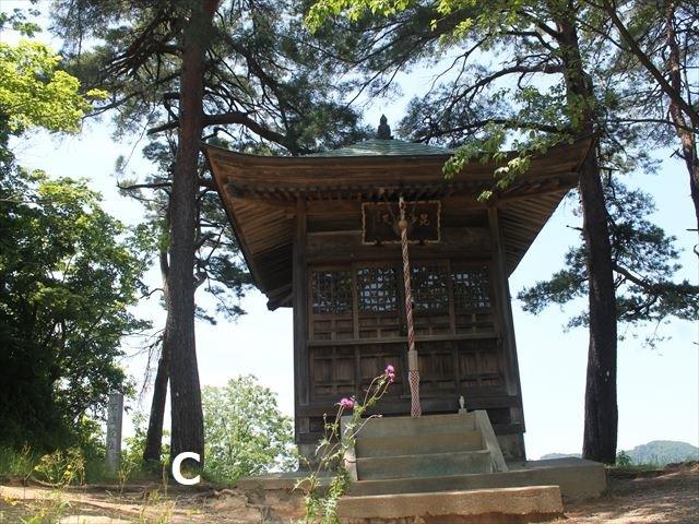 春日山IMG_3616