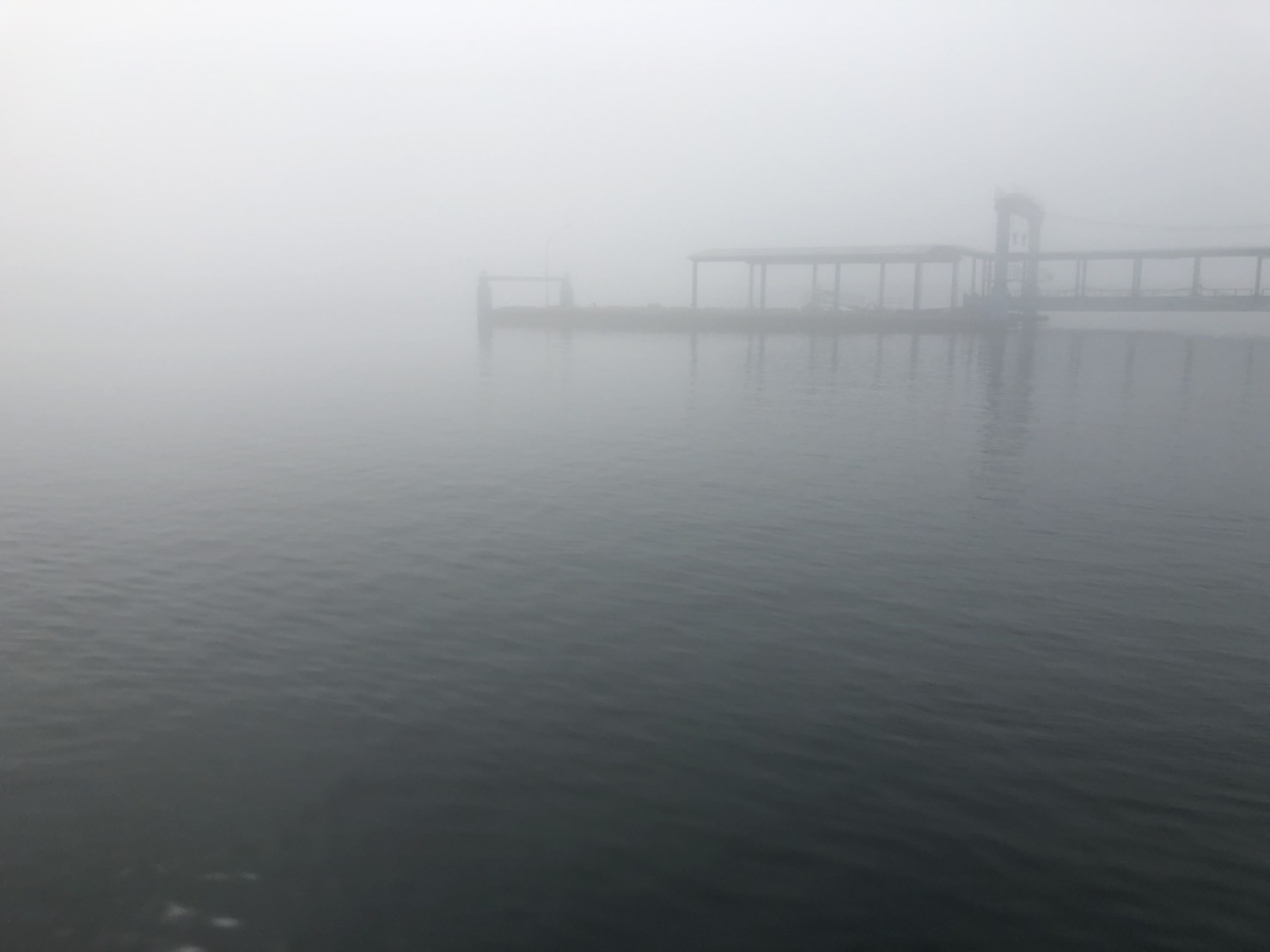 0606ターミナル濃霧