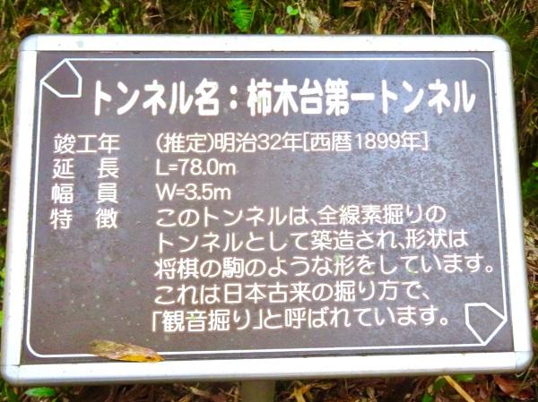 LRXME6378.jpg
