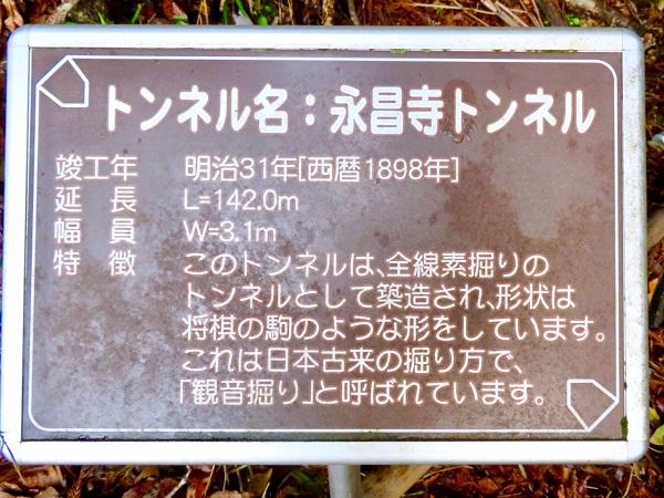 WOOPE0295.jpg