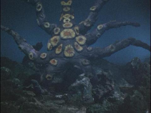 蛸怪獣 ガイロス