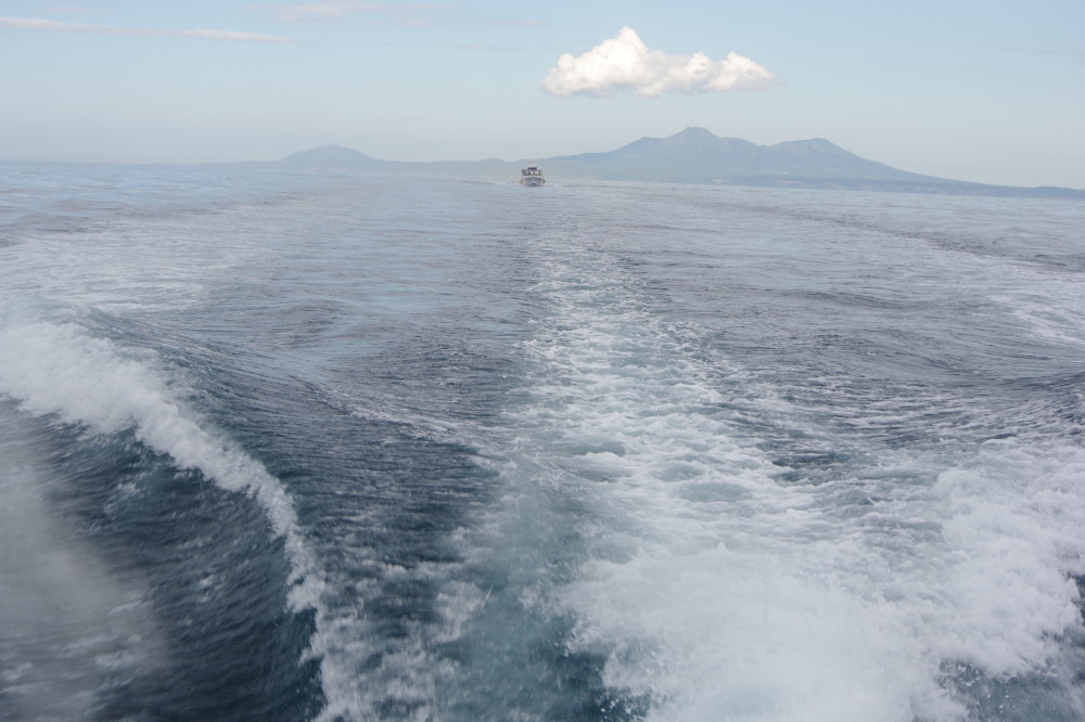 エバーグリーン号の波