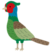 bird_kiji.png