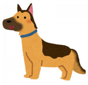 dog_german_shepherd.png