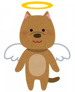 pet_angel_dog.png