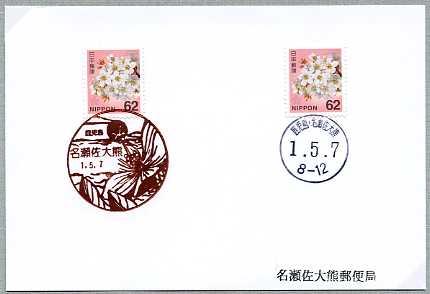 0619名瀬佐大熊