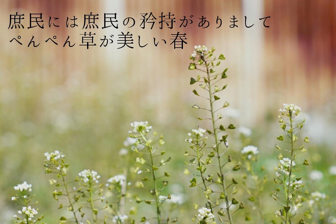 20190331_1400_26898.jpg