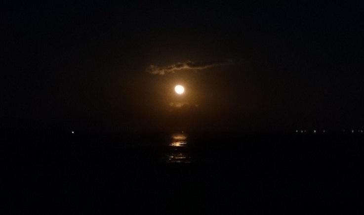 19時7分。海から昇る月