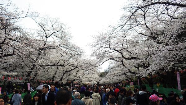 上野で一番混雑の場