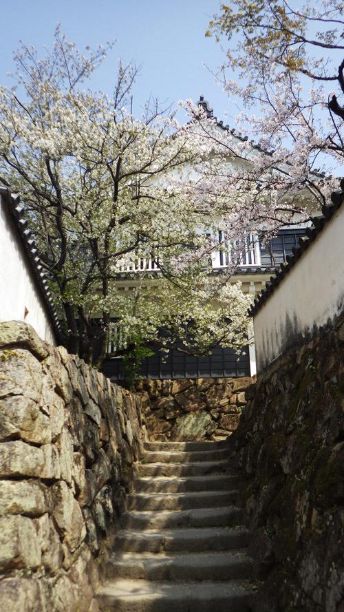 天守へ登る階段