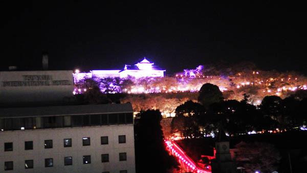 ホテルからのお城山の夜景
