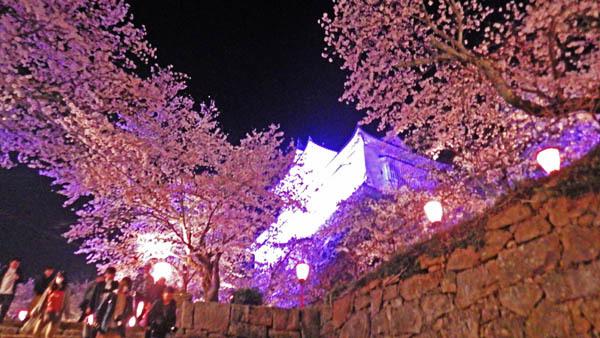 桜の向こうに備中櫓が見える