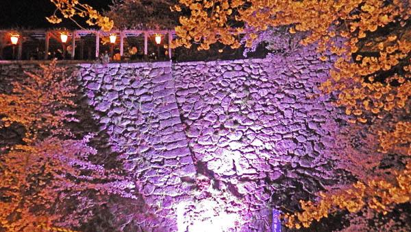 石垣を魅せます。