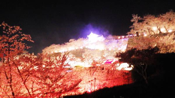 全体が浮かぶ夜景のお城
