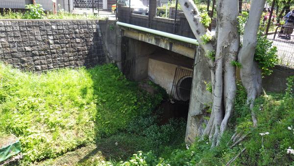 稲荷橋の下