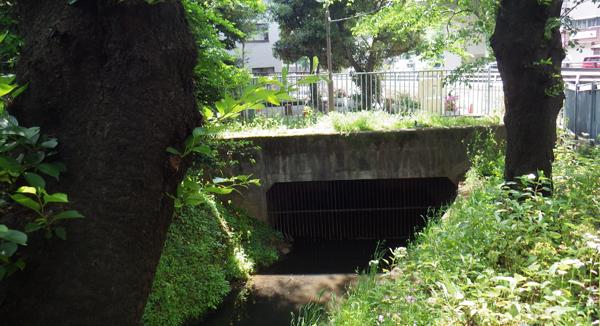 代田橋の所