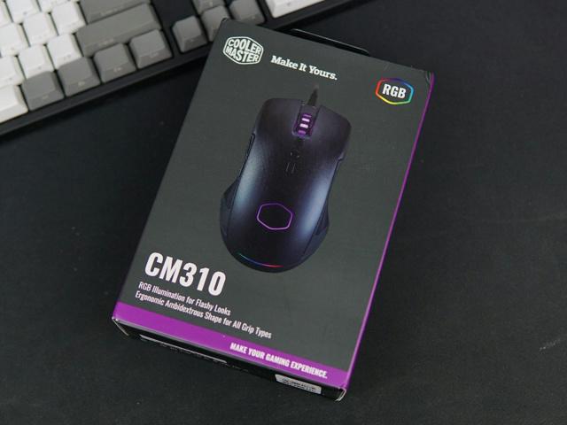CM310_22.jpg