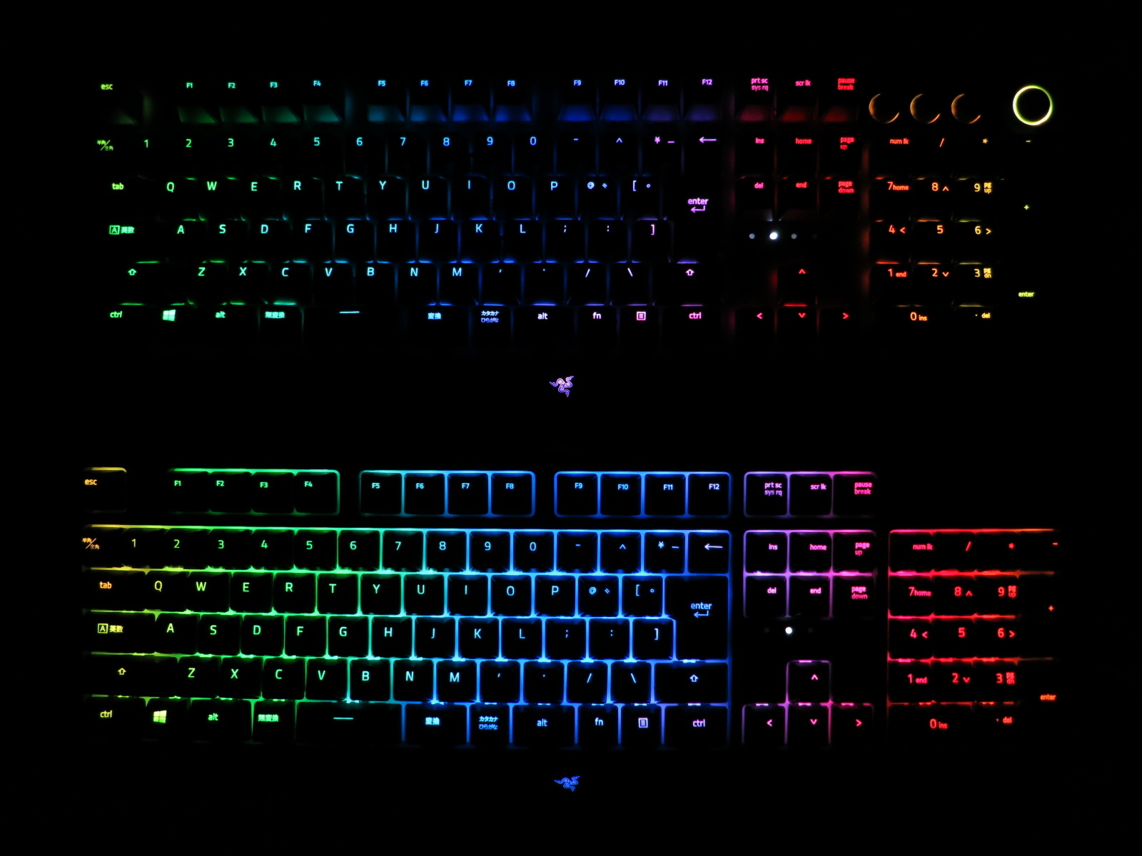 Razer_BlackWidow_2019vsElite_20.jpg