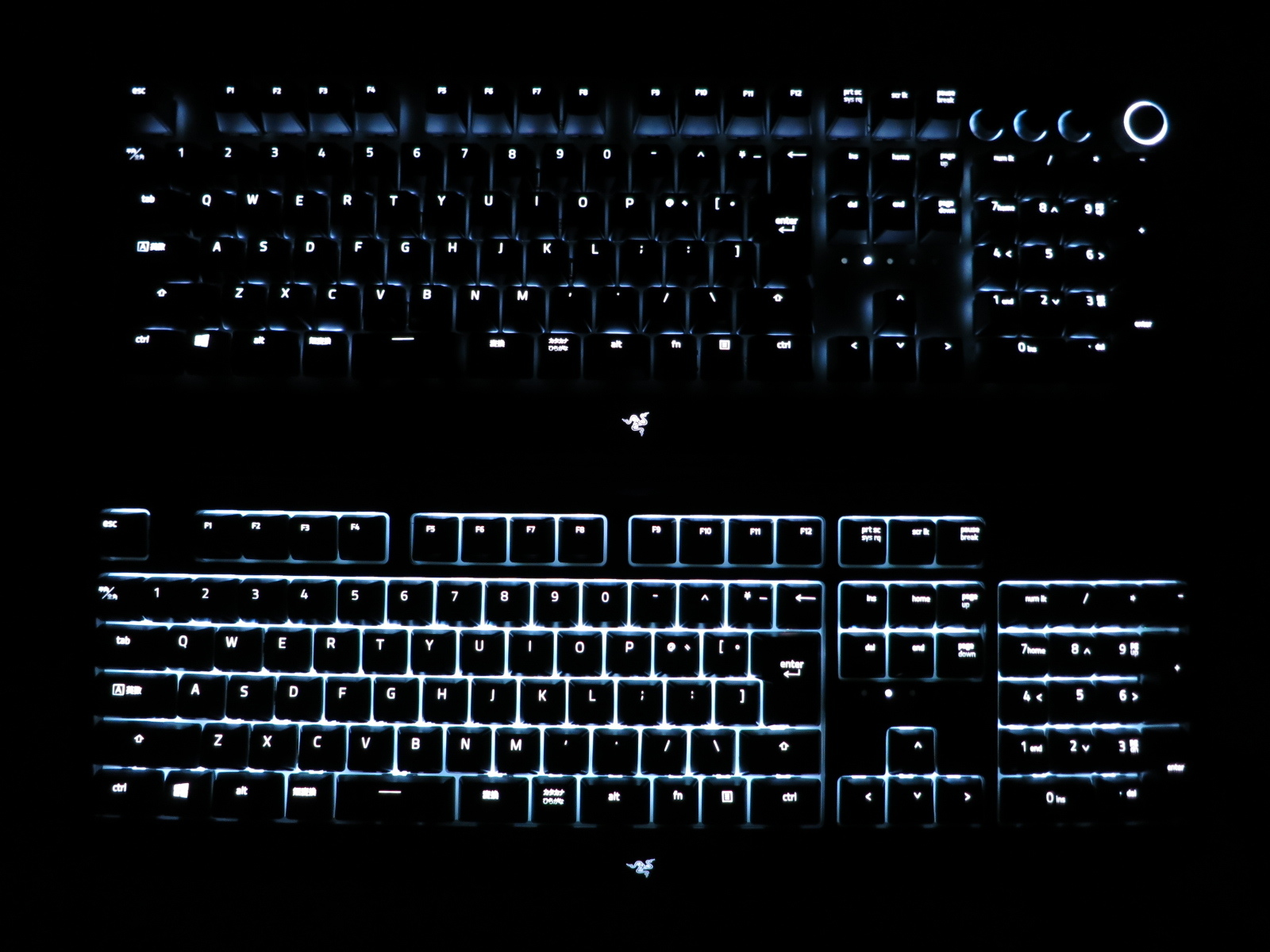 Razer_BlackWidow_2019vsElite_21.jpg