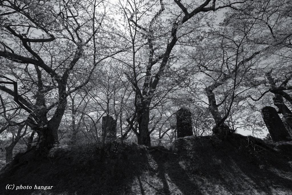 The season is over 三春