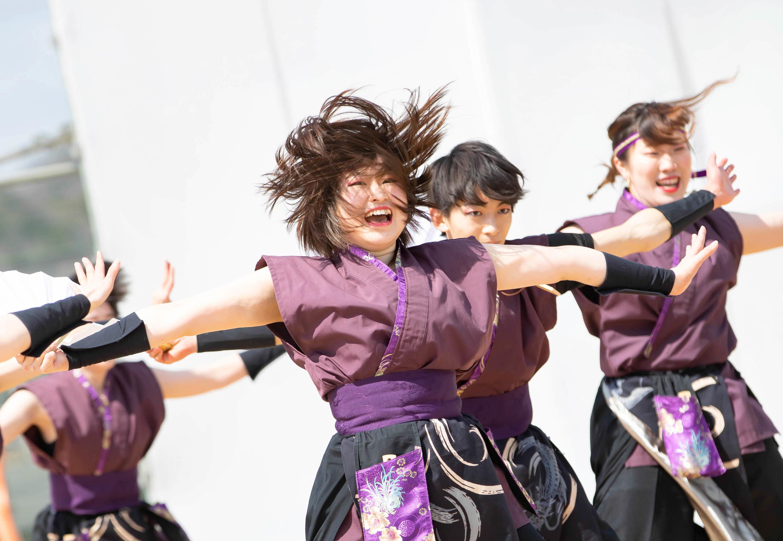 かぬまYOSAKOIフェスティバル.jpg
