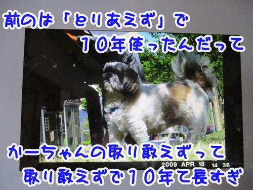 0403-07_20190403165948f78.jpg