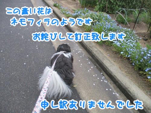 0410-03_201904101525035d5.jpg