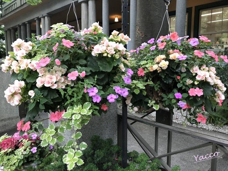 花と器のハーモニー2019 山手234番館