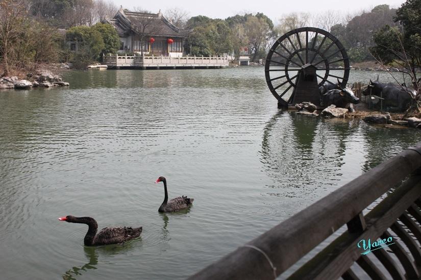 上海へ 4 無錫へ