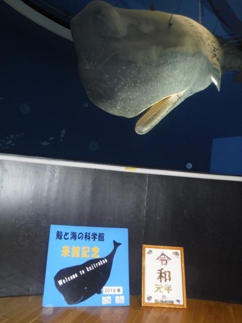 クジラの博物館山田町