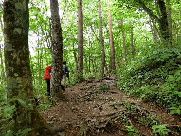 泉ヶ岳登り1