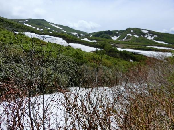 栗駒雪渓 - コピー