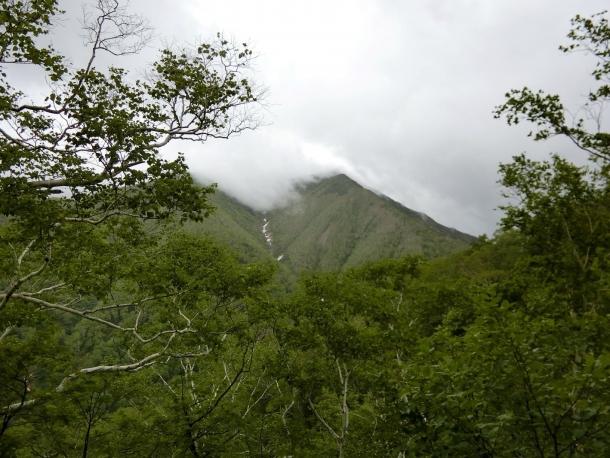 ペテガリ山頂望む5