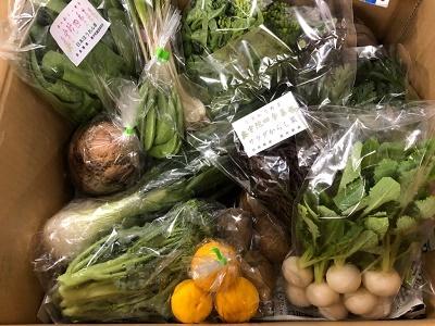 野菜セット3月