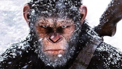 【衝撃】チンパンジーにスマホを与えた結果ww