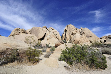 blog 3 Twentynine Palms, Joshua Tree NP, Split Rock_DSC7340-3.19.18.jpg