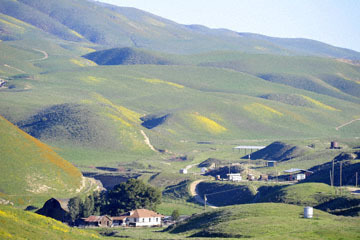 blog 2 Lost Hills on 46, Bitterwater Valley Road, Ranch, CA_DSC7008-3.16.19.jpg