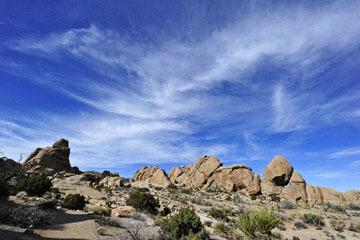 blog 3 Twentynine Palms, Joshua Tree NP, Split Rock, Trail_DSC7457-3.19.18.jpg