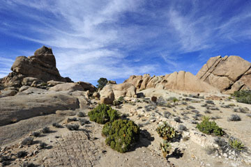 blog 3 Twentynine Palms, Joshua Tree NP, Split Rock, Trail_DSC7454-3.19.18.jpg