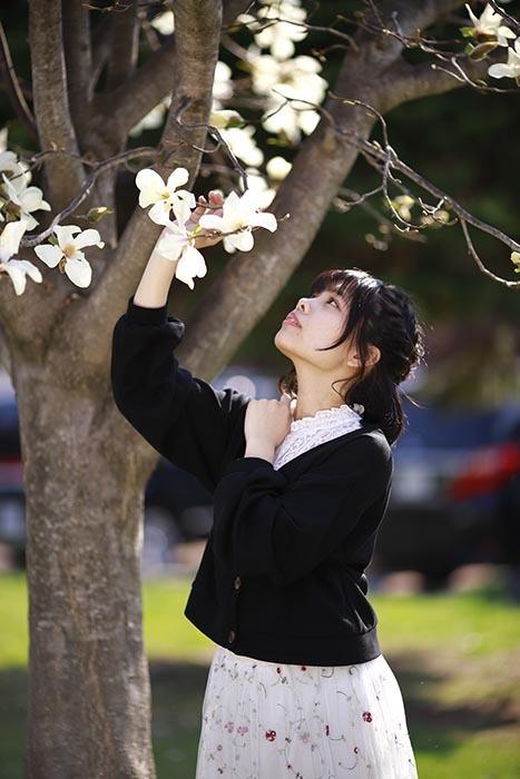 夏葉:こぶしの花