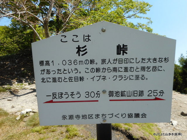 DSCN7167.jpg