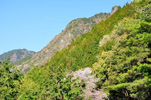 1横倉山190408