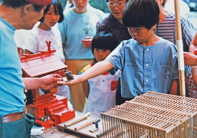 15155-ヤマガラ-1 1986年(33年前)