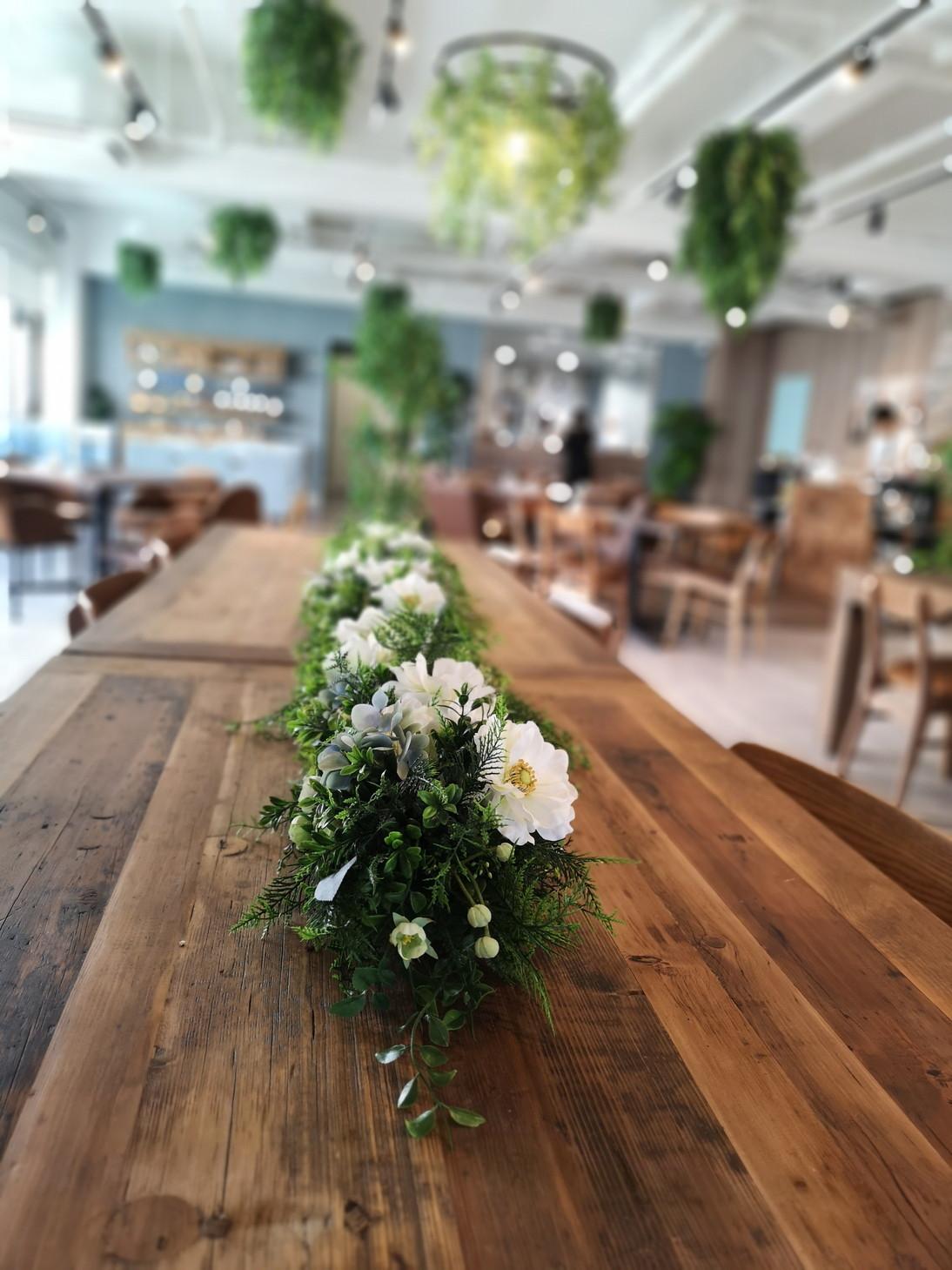 cafeseedoflife (19)